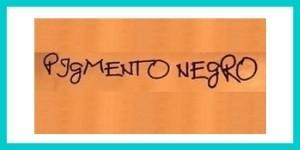 PIGMENTO NERO