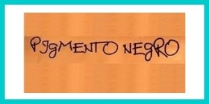 Logo PIGMENTO NERO
